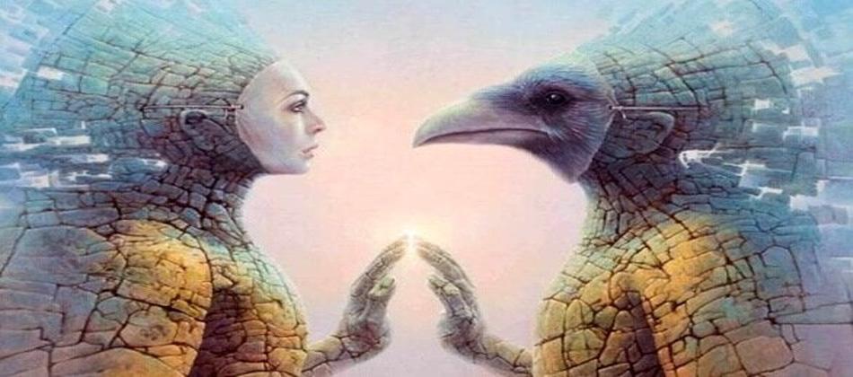 Ruh eşi bulma ve Ruh eşi kavramı – 1.Ders
