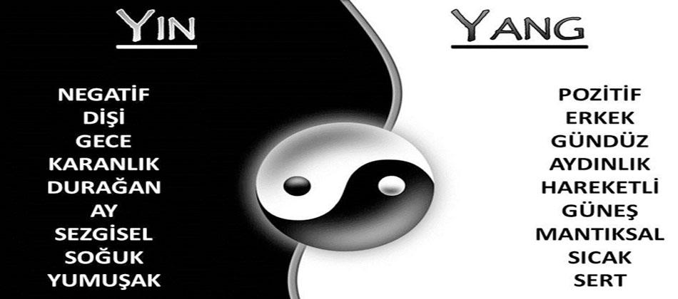 Rakamların Yin-Yang-Simyada Yapısal Özellikleri